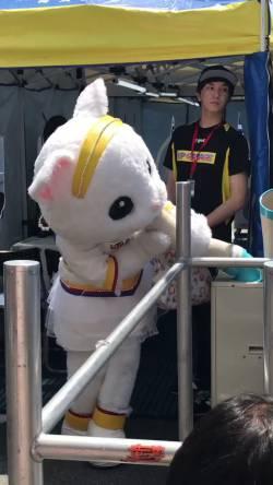 【動画】レースクイーン界初、白猫レースクイーンのアップちゃん、吸引してしまう。