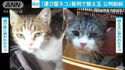 【悲報】違法薬物の「運び屋」、裁判で替え玉が発覚wwwwwwwwwwwwwwww