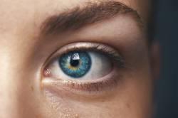 【画像】盲目の少年「ぼく眼の手術するんだ!」化物女「そう…目が見えるようになるといいわね…」