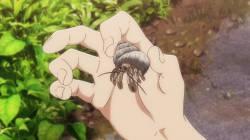 【悲報】ヤドカリさん、騙されて手に入れたガラスの殻でキモい体を晒してしまう