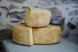 【閲覧注意】イタリア人、とんでもないチーズを作ってしまい炎上