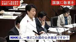 【悲報】有村治子参議員「NHKは何処の国の公共放送ですか?」