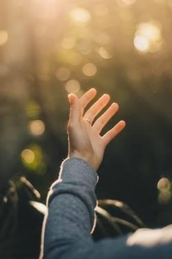 【pickup】【画像あり】1度指を切断してくっつけてもらったワイの手がこちら