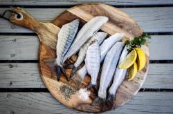 ペスカトリアン ジャネール 水銀中毒 菜食主義 ジャネール・モネイに関連した画像-01