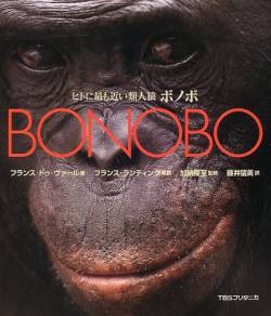 【pickup】【悲報】ジャングルでボノボ観察中に下半身不随になった女さん、大学側に賠償求めるも棄却される
