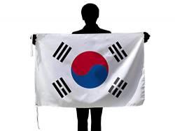 【速報】韓国テコンドー王者、緊急声明。