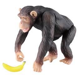 チンパンジー ヒューマンジー 心理学者ゴードン 交配実験 ニューヨーク州立大学オールバニ校に関連した画像-01